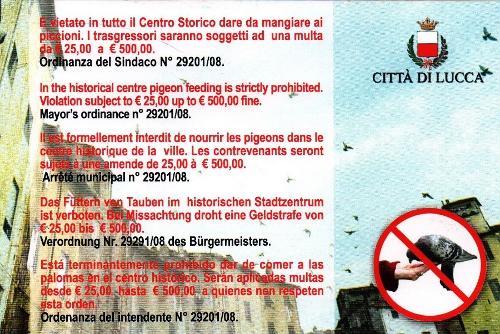 la cartolina anti piccioni