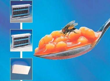 basta mosche in cucina