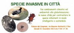 le specie invasive in città