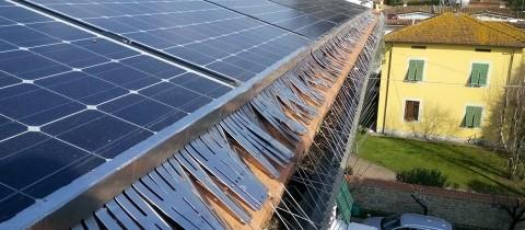 Nidi di piccioni sui pannelli solari e fotovoltaici?Ecco la soluzione
