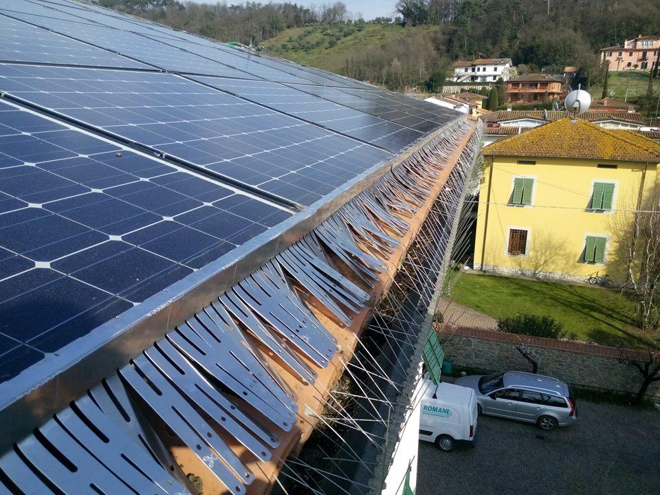 Dissuasore volatili per pannelli solari