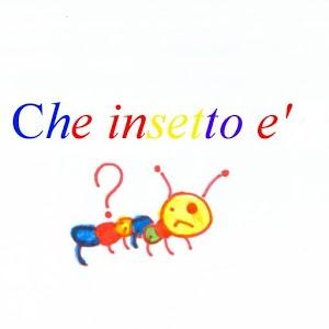 insetti sconosciuti