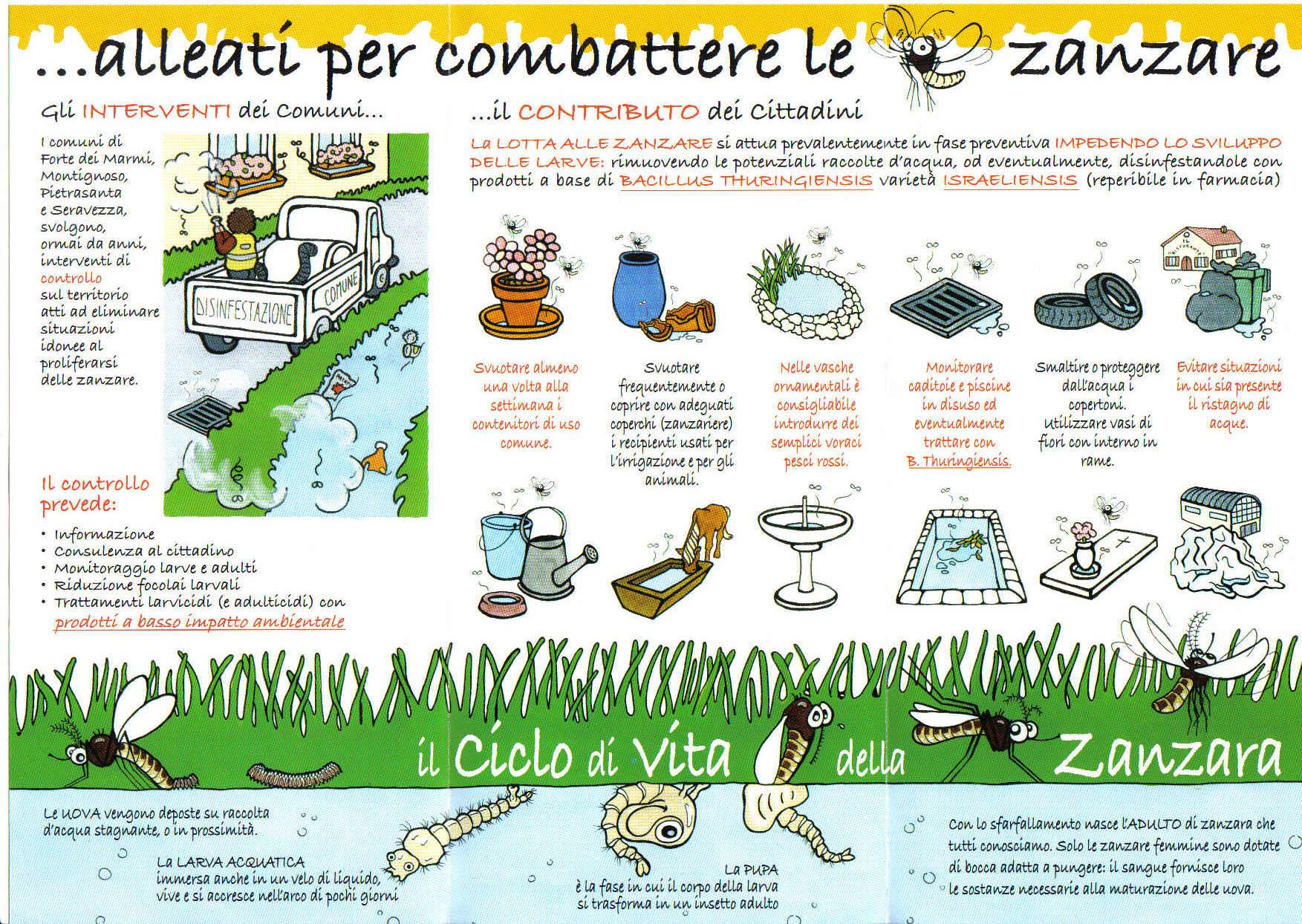 preveniamo le zanzare