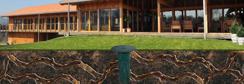 postazione termiti