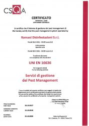cert-16636-romani-disinfestazioni