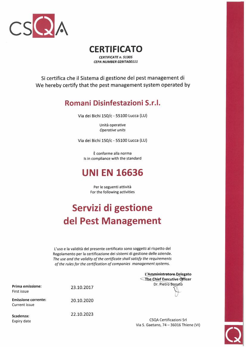 16636_Romani