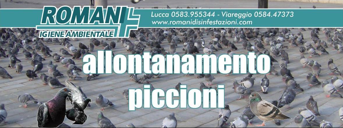 romani-telone